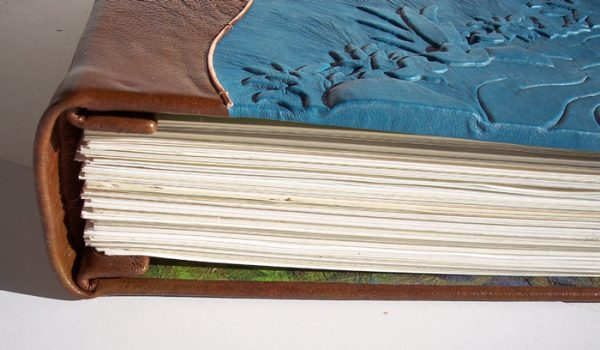 covered leather spine on screwpost book