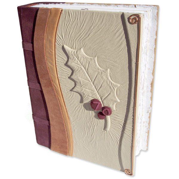Holly 70th Birthday Book