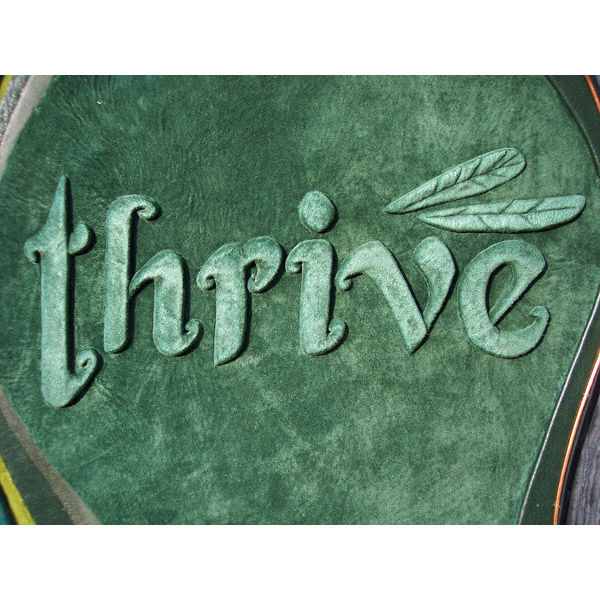 thrive dragonfly wing business logo embossed on green suede leather portfolio cover