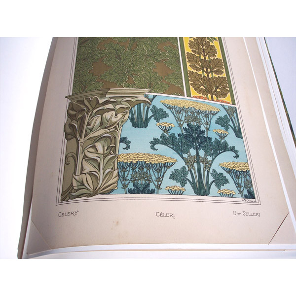 La Plante Art Nouveau floral print by M. Eugene Grasset, with Celery Leaf pillar in custom leather book
