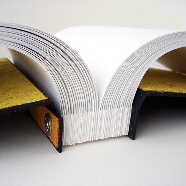 spine edge on open screwpost book showing flexing pages